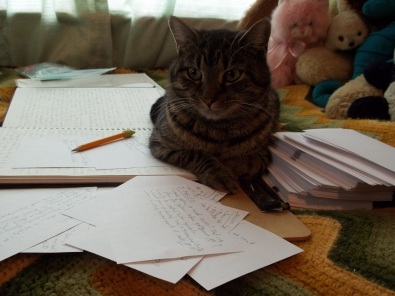 2014-01-05 Writer Cat is Writing!
