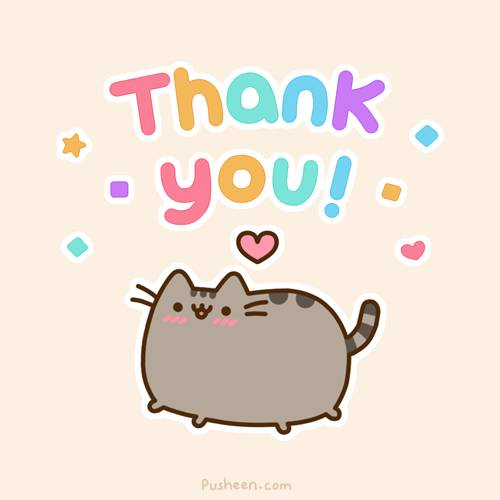 398181-cats-cat-saying-thank-you